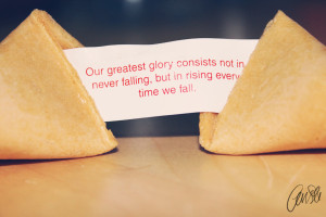 fortune, fortune cookie, macro, photography, quote, true, words