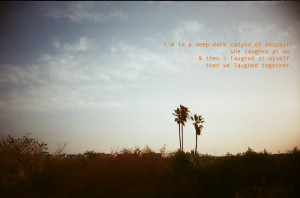 photography by yours truly - quotes by yours truly & my loved ones.