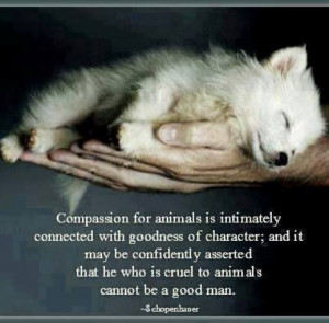 Compassion for animals is intimately connected with goodness of ...