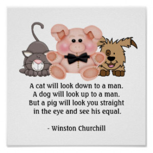 ... quotes by winston churchill source http www zazzle co uk winston