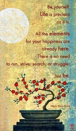 ... need to run, strive, search, or struggle. Just Be. ~ Thich Nhat Hanh