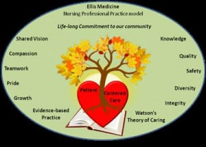 elements of professional nursing practice variety of professional ...