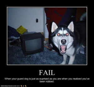 funny_dog_pictures_surprised_robbed_Funny_ass_pics-s492x457-31397-580 ...