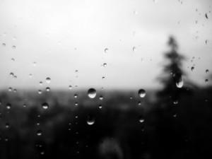 Viewing rain beyond the window pane is beautifully dark and peaceful.