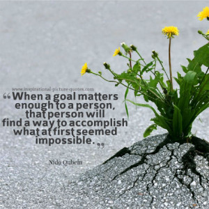 Goal Inspirational Quote Image
