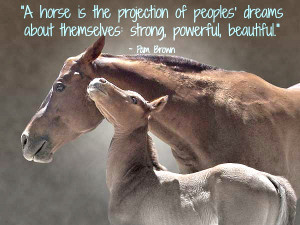 ... Dreams About Themselves Strong Powerful Beautiful - Animal Quote