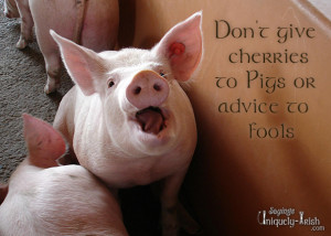 Don't give cherries to Pigs or advice to Fools""
