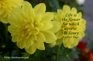 famous sayings flowers