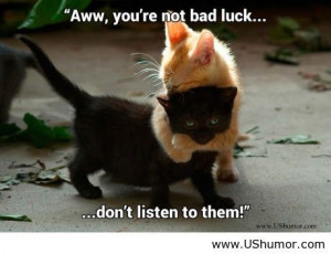 Black cats, not bad luck US Humor - Funny pictures, Quotes, Pics, P...
