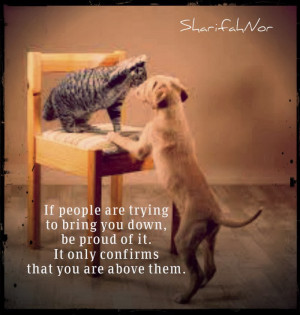Quotes About People Letting You Down If people are trying to bring