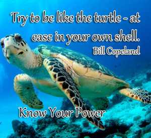 quote bill copeland quote 31 bill copeland quotes bill copeland quotes ...