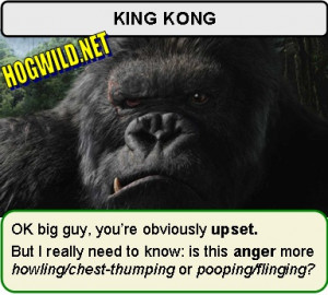 Hogwild Semi Hilarious Comedy Funny King Kong Jokes And Pictures