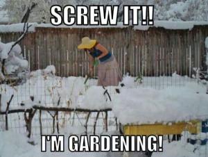 spring fever quotes | Spring fever