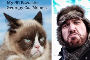 My 35 Favorite Grumpy Cat Memes