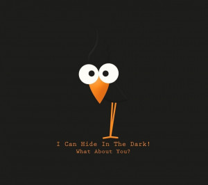 bird text funny wallpapers as
