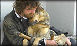 The Co-Occurrence of Homelessness in People and their Companion ...
