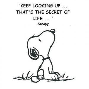 ... ... that's the secret of life. Snoopy #CharlesSchulz #quote #taolife