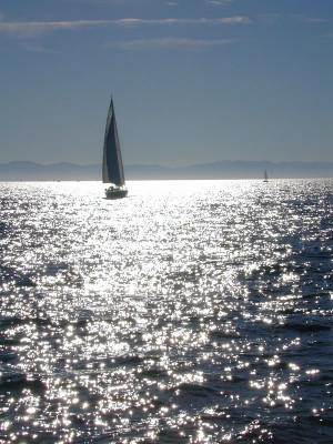 short sailing quotes