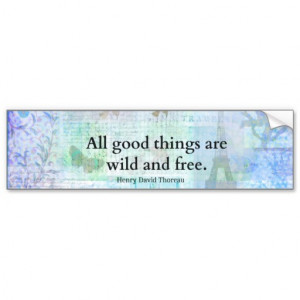 henry_david_thoreau_inspirational_freedom_quote_bumper_sticker ...