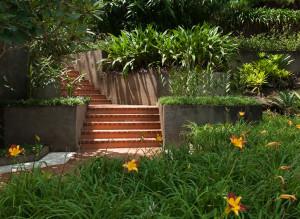 ... , Petropolis, Brazil. Landscape designed by Roberto Burle Marx