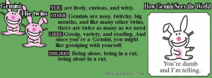 happy bunny gemini zodiac astrology birthday sign