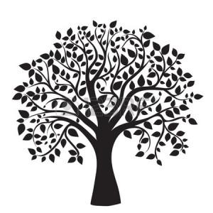 ... clip art tree clipart family reunion clip art family tree clip art