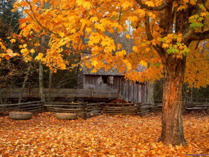 John Cable Mill, Cades Cove at Great Smoky Mountains National Park in ...