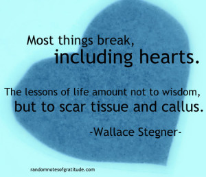 Image of Wallace Stegner Quote