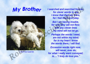 Love my Brother Poems And Quotes i Love my Brother Poems