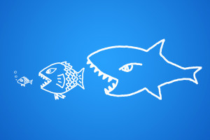 Big fish book quotes quotesgram for Big fish eat small fish