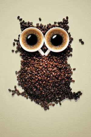 ... Pictures free night coffee owl wallpapers free night coffee