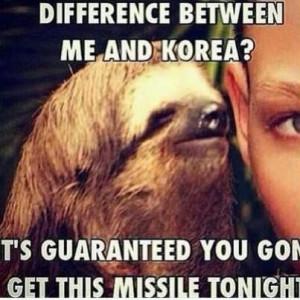 sloth i love sloths