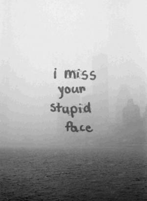 Miss Your Stupid Face Quote