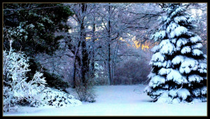 Mother Nature Snow Quotes 2011nov30first+snow mother nature didnt ...