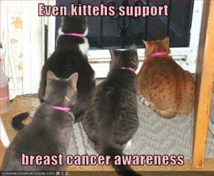 ... : Funny Breast Cancer Quotes , Funny Breast Cancer Quotes for Shirts