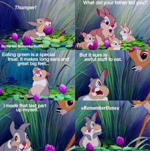 Flower Bambi Quotes Thumper