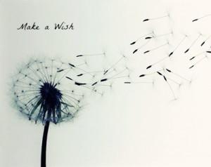 Make A Wish Quotes Tumblr Make a wish quotes tumblr make