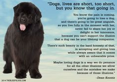 The Blissful Dog | Dog Quotes
