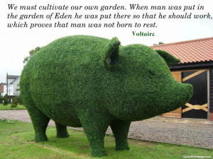 You can download Voltaire Gardening Quotes in your computer by ...
