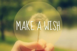 Make a wish quote flowers dandelion