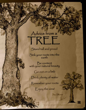 Listen to the trees...