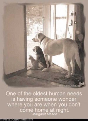 best dog quotes | uploaded to pinterest