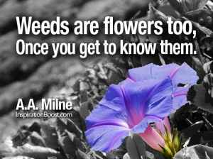 Flowers, Flower Quotes, Relationship Quotes, short life quotes, famous ...