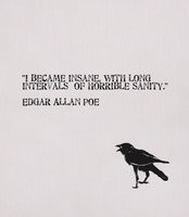 Became Insane - Edgar Allan Poe quote.
