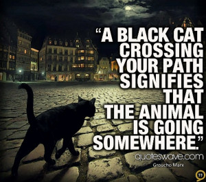 ... cat crossing your path signifies that the animal is going somewhere