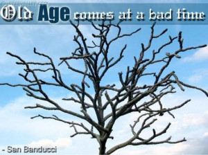 Old age comes at a bad time quote
