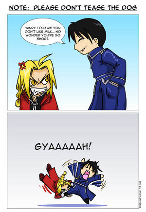 Related Pictures funny full metal alchemist quotes