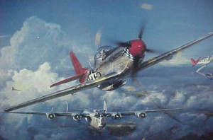 Red Tails Picture Slideshow