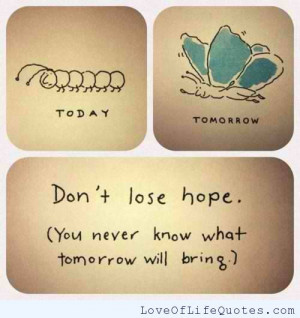 related posts never lose hope never lose hope never lose hope choose ...
