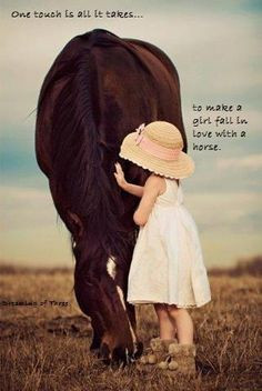 Horses and Riding quotes